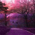 Surreal Fantasy Dark Pink Purple Nature Woodlands Flying Ravens  by Kathy Fornal