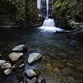 Susan Creek Falls Oregon 1 by Bob Christopher