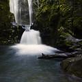 Susan Creek Falls Oregon 2 by Bob Christopher