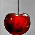 Suspended Cherry by Suzanne Stout
