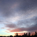 Suspenseful Skies by Audrey Robillard