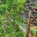 Suspension Bridge At Lava Canyon by Marie Leslie