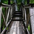 Suspension Bridge by Carol  Bradley