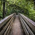 Suspension Bridge To Destiny by Carolyn Marshall