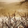 Susquehanna Vibes... by Arthur Miller