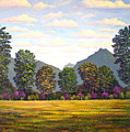Sutter Buttes In Springtime by Frank Wilson