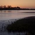 Suwanee River At Dusk by Sven Brogren