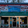 Suwannee River Diner by David Lee Thompson