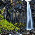 Svartifoss Waterfall - Iceland by Stuart Litoff