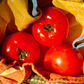 Swaddled Tomatoes by Andrea Simon