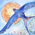 Swallows Return  by Trudi Doyle