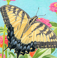Swallowtail Butterfly And Zinnias by Sarah Batalka