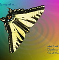 Swallowtail - Come Fly Away With Me by Joyce Dickens