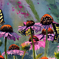 Swallowtails And Cone Flowers by Paul Temple