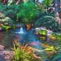 Swamis Garden 2 by Robert Stein