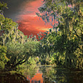 Swamp 1 by Larry White