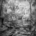 Swamp Dream by Jim Cook