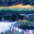 Swamp Flowers by Sandy Sereno