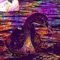 Swan Bird Animal Lake Summer  by PixBreak Art