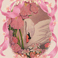 Swan In Pink Card by Teresa Frazier
