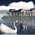 Swan Island by Jim Coe