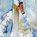 Swan by Kovacs Anna Brigitta