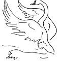 Swan by Margarita Basalyga