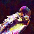 Swan Plumage Clean Water Bird  by PixBreak Art