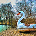 Swan Song by Dominic Piperata