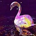 Swan Water Bird Water River  by PixBreak Art