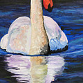 Swan Wildlife Art by Mary Jo Zorad