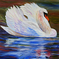 Swan Wildlife Painting by Mary Jo Zorad