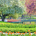 Swans And Tulips 1 by Susan Cole Kelly