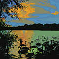 Swans At Sunset by James Hill