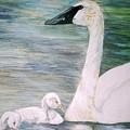 Swans by Debra Sandstrom