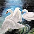 Swans In Love by Carol Grimes