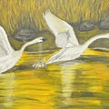 Swans In The Fall In Montana by Teresa French McCarthy