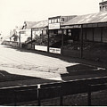 Swansea - Vetch Field - North Bank 1 - Bw - 1960s by Legendary Football Grounds