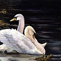 Swansong by Kathleen Marshall McConnell