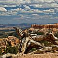 Sweeping Bryce Canyon Vista by Allan Einhorn