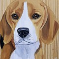 Sweet Beagle  by Debbie LaFrance
