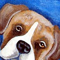 Sweet Boxer Portrait by Tammy Brown