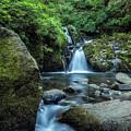 Sweet Creek Falls Vertical by Belinda Greb