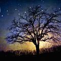 Sweet Dreams by Iris Greenwell