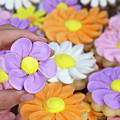 Sweet Floral Array by Sheila Fitzgerald