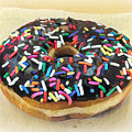 Sweet Indulgence - Donut by Miriam Danar