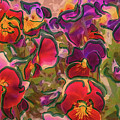 Sweet Viola by Leslie Montgomery
