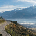 Swerving Road In Valtellina, Italy by Alexandre Rotenberg
