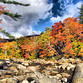 Swift River New Hampshire by Elizabeth Dow