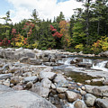 Swift River, New Hampshire by Scott Ludgin